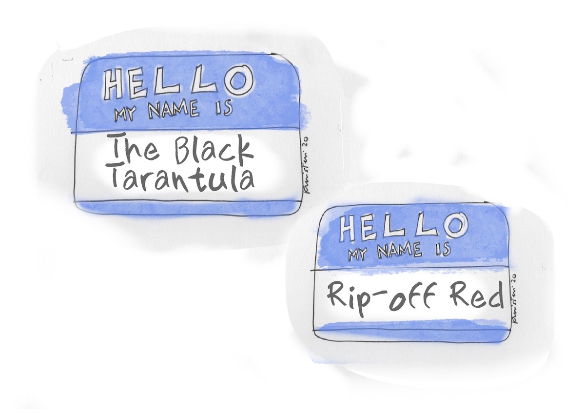 """Two """"Hello, My Name is"""" tags, with the names """"The Black Tarantula"""" and """"Rip-Off Red"""" written on them."""